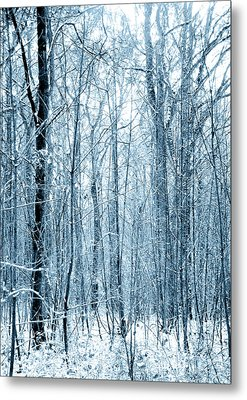 Tree Trunks Pattern Metal Print by Svetlana Sewell