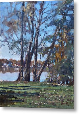 Trees By The River Metal Print by Ylli Haruni