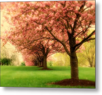 Trees In A Row Metal Print by Angie Tirado