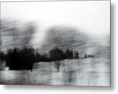 Treescape 2 Metal Print by David Hickey