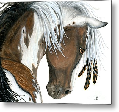 Tri Colored Pinto Horse Metal Print by AmyLyn Bihrle