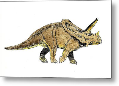 Triceratops Metal Print by Michael Vigliotti