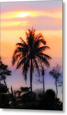 Tropical 6 Metal Print by Mark Ashkenazi