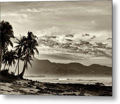 Tropical Paradise  Metal Print by Skip Nall