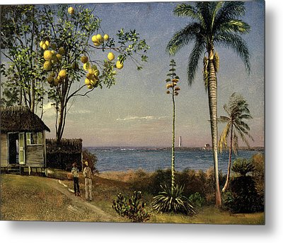 Tropical Scene Metal Print by Albert Bierstadt