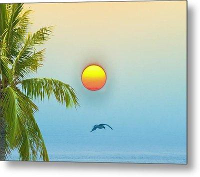 Tropical Sun Metal Print by Bill Cannon