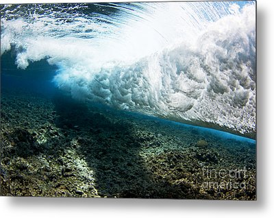 Tropical Wave Curl Metal Print by Dave Fleetham - Printscapes