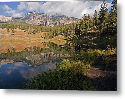 Trout Lake, Yellowstone National Park Metal Print by DBushue Photography