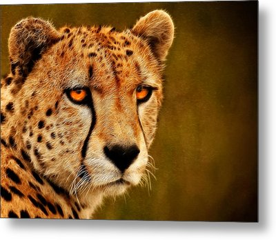 Try Me Metal Print by Ricky Barnard
