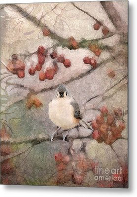 Tufted Titmouse Metal Print by Betty LaRue
