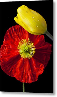 Tulip And Iceland Poppy Metal Print by Garry Gay