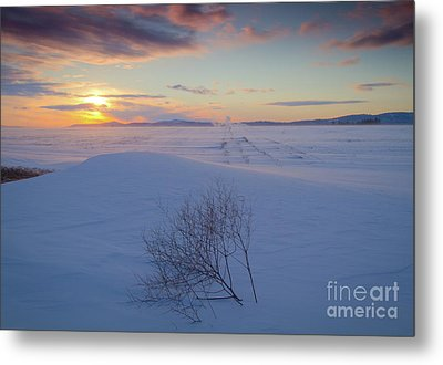 Tumble In The Snow Metal Print by Idaho Scenic Images Linda Lantzy