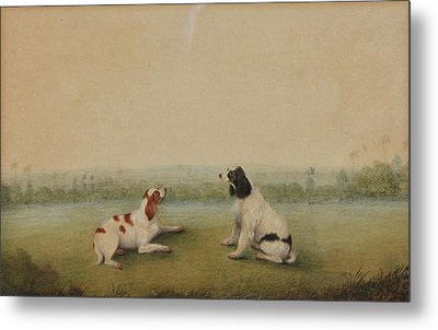 Two Dogs In A Landscape Metal Print by Shaykh Muhammad