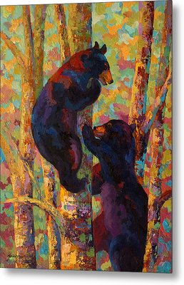 Two High - Black Bear Cubs Metal Print by Marion Rose