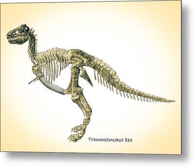 Tyrannosaurus Rex Skeleton Metal Print by Bob Orsillo