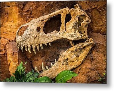 Tyrannosaurus Metal Print by Wim Lanclus