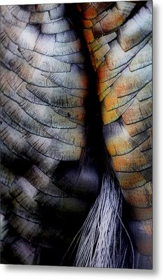 Uncle Tom's Gobbler N'all....  Metal Print by Russell Styles
