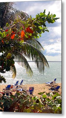 Under The Palms In Puerto Rico Metal Print by Madeline Ellis