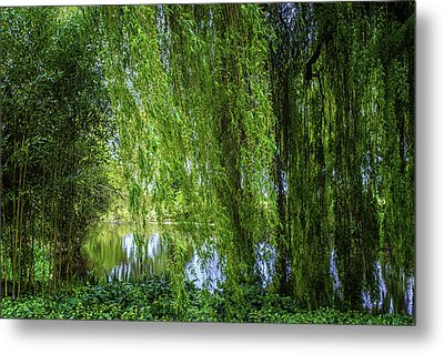 Under The Willow Tree Metal Print by Martin Newman