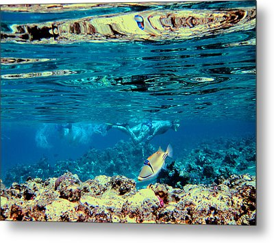 Underwater World. Beautiful Fish. Metal Print by Andy Za