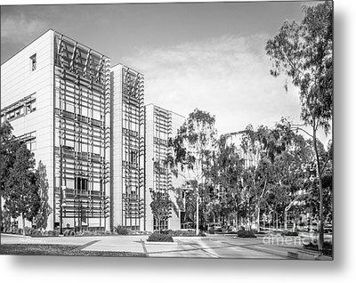 University Of California San Diego Bioengineering  Metal Print by University Icons