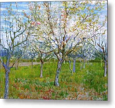 Van Gogh The Pink Orchard Metal Print by Vincent Van Gogh