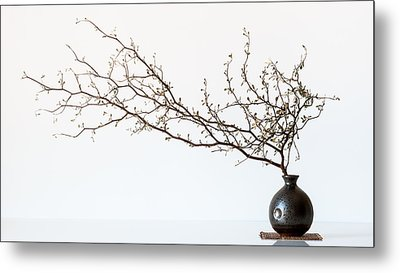 Vase And Branch Metal Print by Prbimages