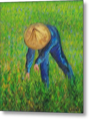 Vietnamese Rice Planter  Metal Print by Lore Rossi