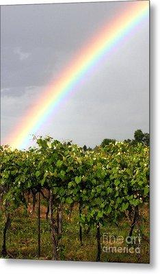Vineyard Rainbow Metal Print by Laurel Sherman