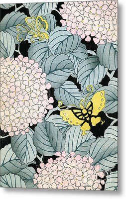 Vintage Japanese Illustration Of A Hydrangea Blossoms And Butterflies Metal Print by Japanese School