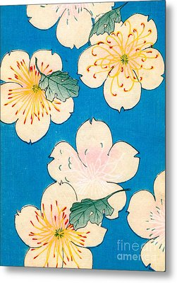 Vintage Japanese Illustration Of Dogwood Blossoms Metal Print by Japanese School