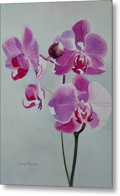 Violet Orchid Metal Print by Sharon Freeman
