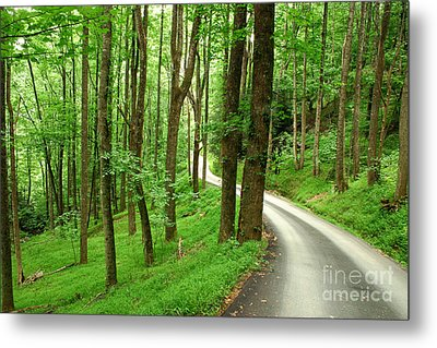 Walking On A Country Road - Appalachian Mountain Backroad Metal Print by Matt Tilghman