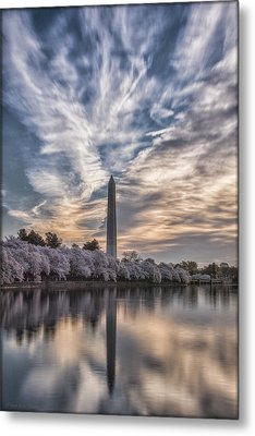Washington Blossom Sunrise Metal Print by Erika Fawcett
