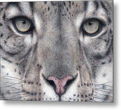 Watching You...snow Leopard Metal Print by Pat Erickson