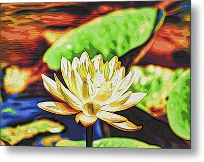 Water Lily Metal Print by Alexandre Ivanov