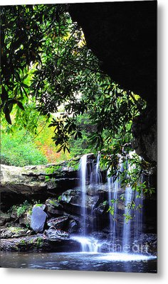 Waterfall And Rhododendron Metal Print by Thomas R Fletcher