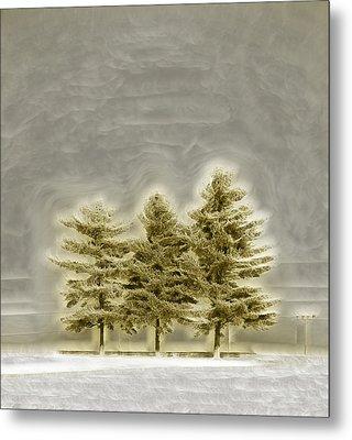 We Three Trees Metal Print by Bill Tiepelman
