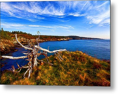 Weathered Coast Metal Print by Bill Caldwell -        ABeautifulSky Photography
