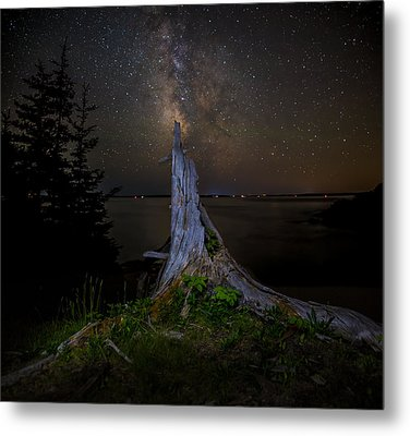 Weathered Stump Under The Stars Metal Print by Brent L Ander