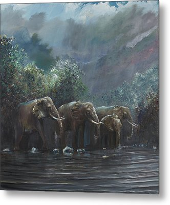 Welcome Waters Metal Print by Vincent Alexander Booth