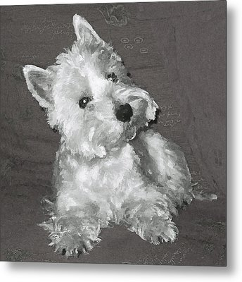 West Highland White Terrier Metal Print by Charmaine Zoe