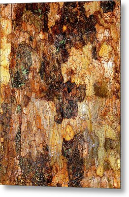 Wet Tree Bark 1 Metal Print by Beth Akerman