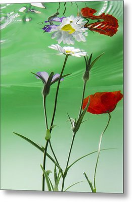 Wet Wild Flower Metal Print by Han Van Vonno