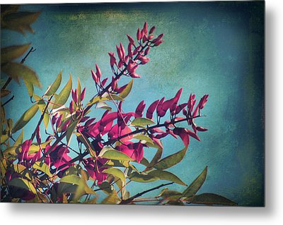 When You Love Someone.... Metal Print by Laurie Search