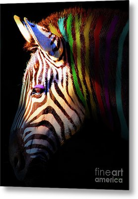When Zebras Dream 7d8908 Vertical Metal Print by Wingsdomain Art and Photography
