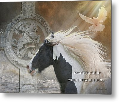 While I Breathe I Hope Metal Print by Terry Kirkland Cook
