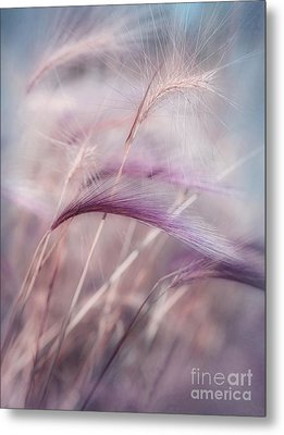 Whispers In The Wind Metal Print by Priska Wettstein