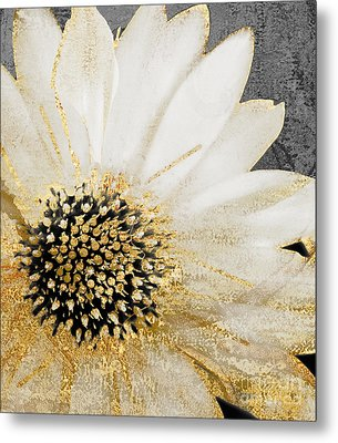 White And Gold Daisy Metal Print by Mindy Sommers