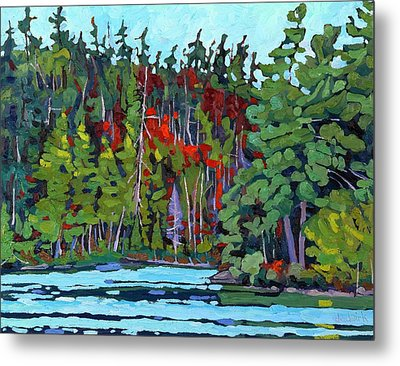White Cedar Shore Metal Print by Phil Chadwick